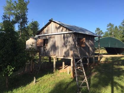 Nicaragua Hut